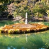 U bašti hrama - Kjoto