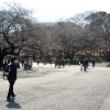 ueno-park-4