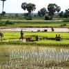 kambodzaa