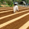 Sri Lanka - obicaji - gradjevinarstvo - siromastvo - seljaci - sigiriya - polanoruva -