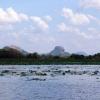 Sri Lanka - Sigiriya - Sigirija - jezero