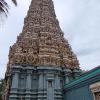 Sri Lanka - hram - biblioteka - kralj - polonaruva - kraljevstvo - budisti - hinduisti - monasi - dambula - pecine - bude - statue - molitva