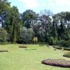 Sri Lanka -- kendi - kandy - grad - centar - suma - botanicka basta - ljudi - stanovnistvo - budin zub - hram -