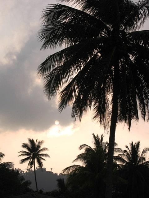 Tajland - egzotika