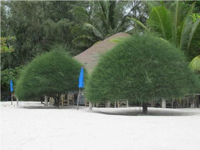 mangatrip-tajland-avantura-malibu-plaza