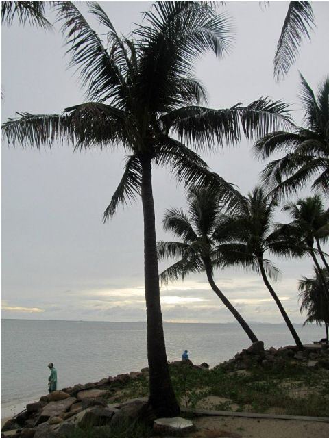 mangatrip-tajland-avantura-palma