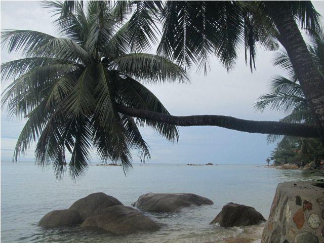 mangatrip-tajland-avantura-plaza-i-palma