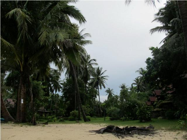 mangatrip-tajland-avantura-ulaz-na-plazu