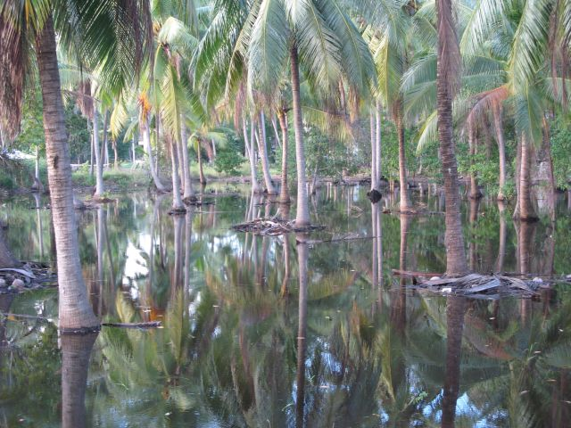 Tajland - posle kiše