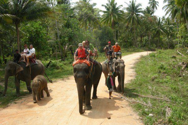 Tajland - Jahanje slonova