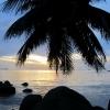 mangatrip-tajland-avantura-ispod-palme