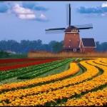 Ponuda za Amsterdam