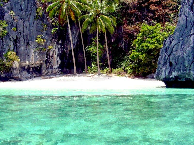 FILIPINI - PALAVAN - 15 dana