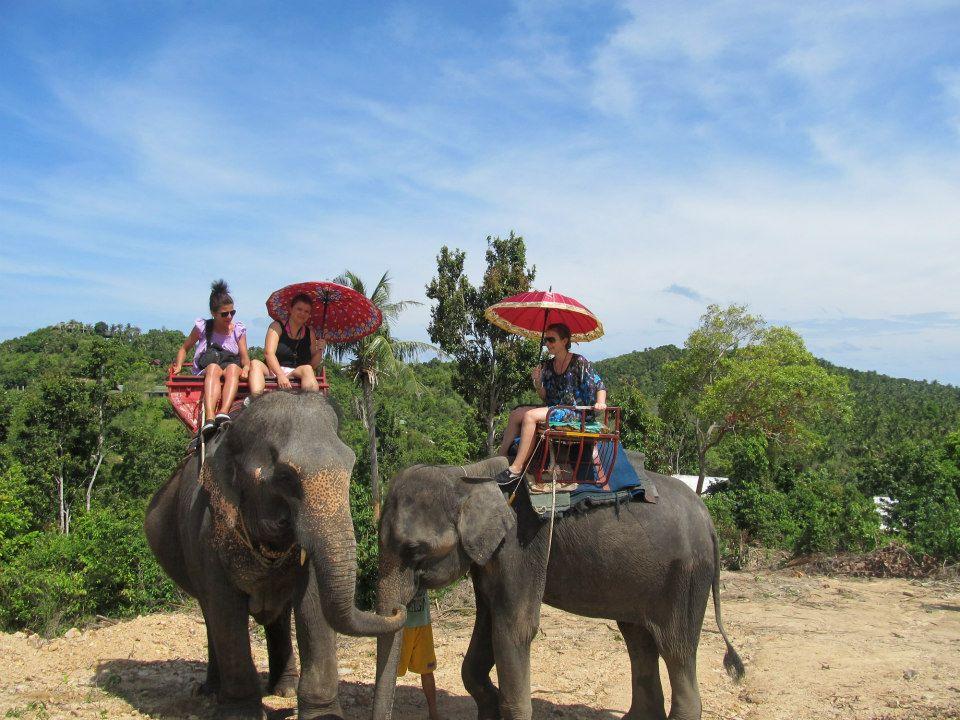 Jahanje slonova na Tajlandu