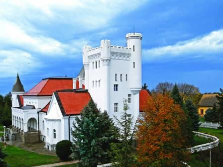 Dvorci Vojvodine