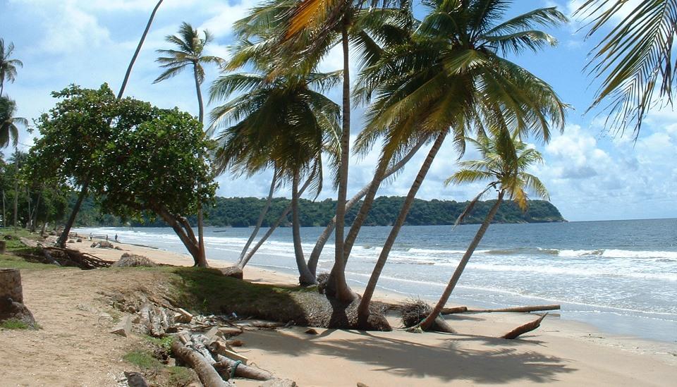 kuba-plaze