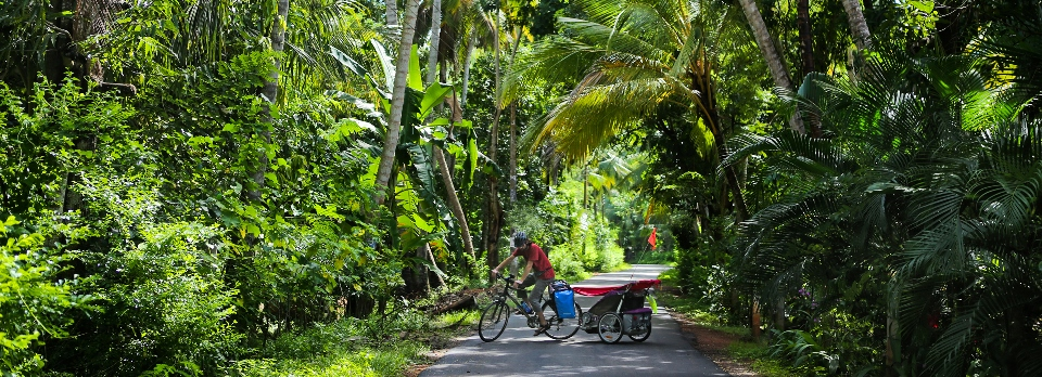 Sri Lanka priroda