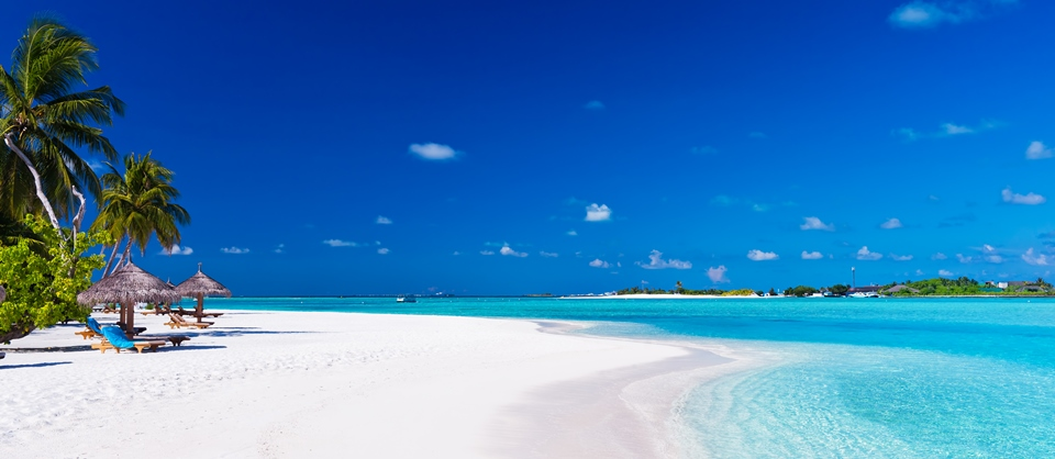 Maldivi MangaTrip