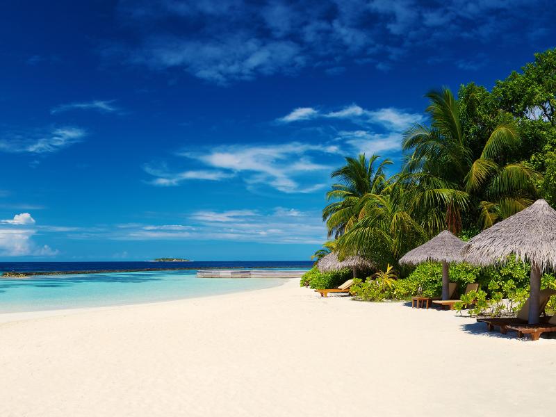 MALDIVI - 11 dana