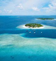 Malahini Kuda Bandos Maldivi 2