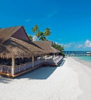 Malahini Kuda Bandos Maldivi 5