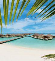 Paradise Island Resort Maldivi 1