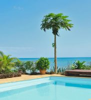 Zanzi Resort- Zanzibar 25