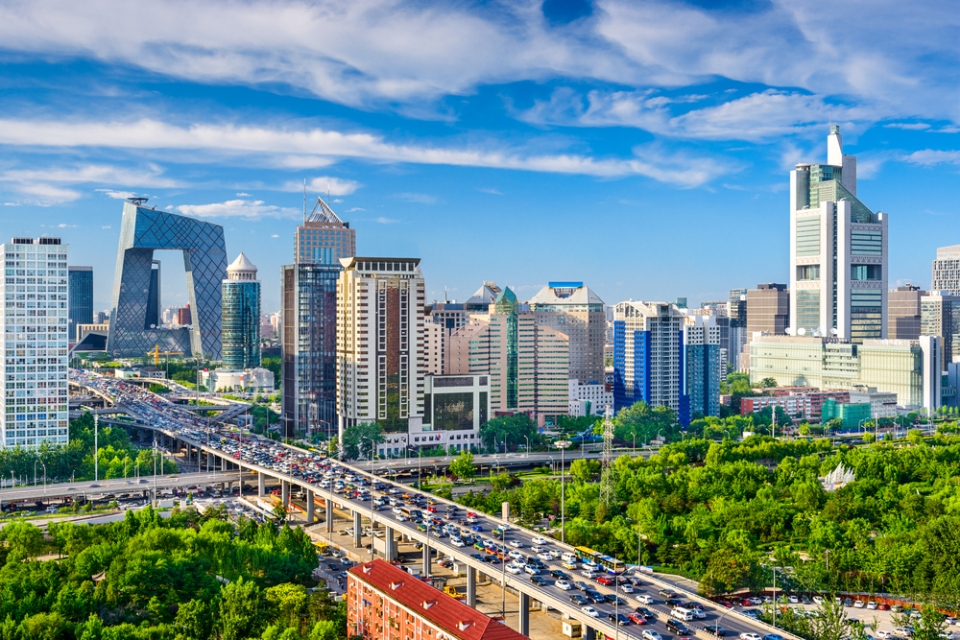 Kina stranica za upoznavanja 100 besplatno upoznavanjem fosila polena i buba