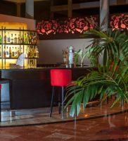 Hotel Bavaro Princes Punta Cana 19